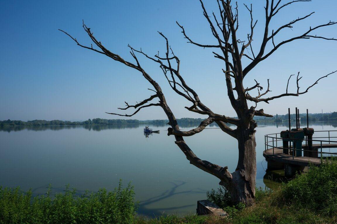 Jarohnevice pond