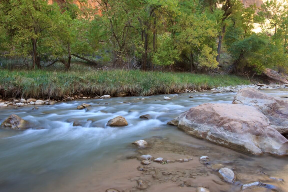 Virgin River in Zion National Park